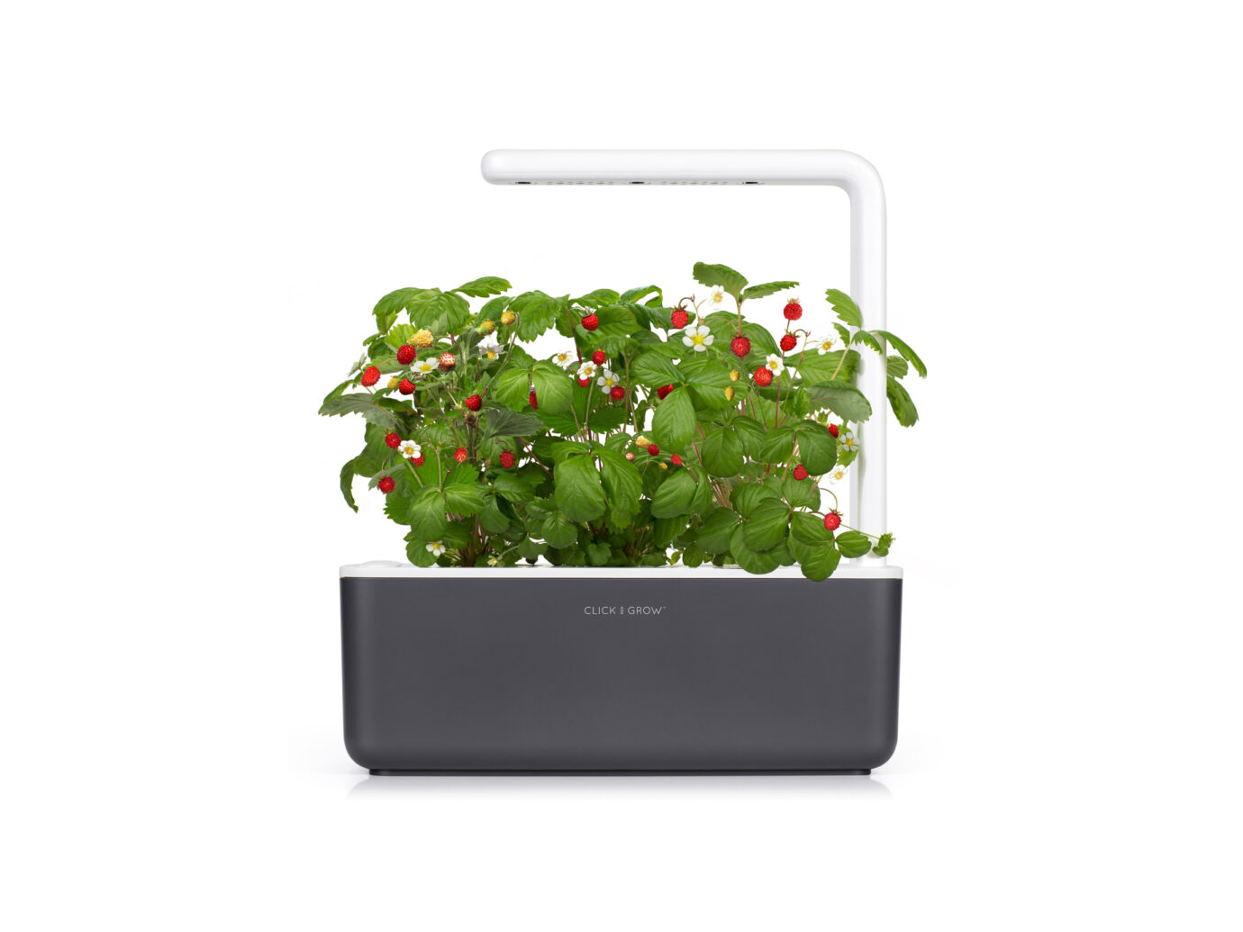 Click & Grow Smart Garden 3 Self Watering Indoor Garden