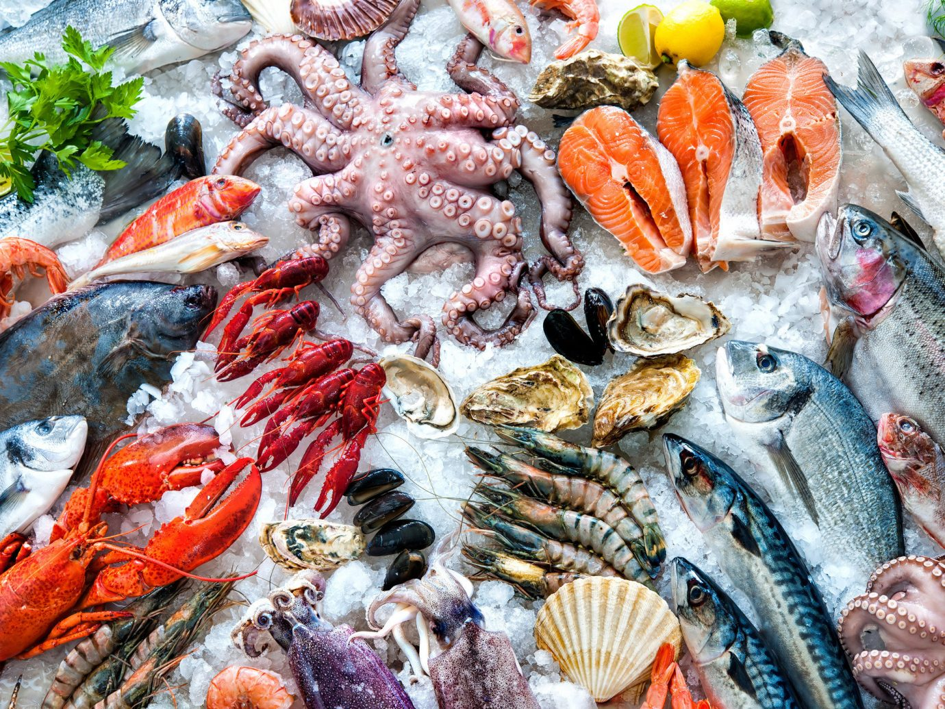 Trip Ideas marine biology food Seafood fish dish cuisine different meat variety