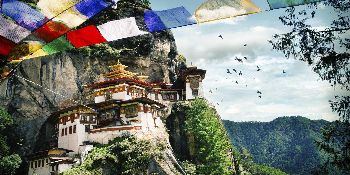 Trip Ideas tree outdoor mountain landmark tourism screenshot colorful