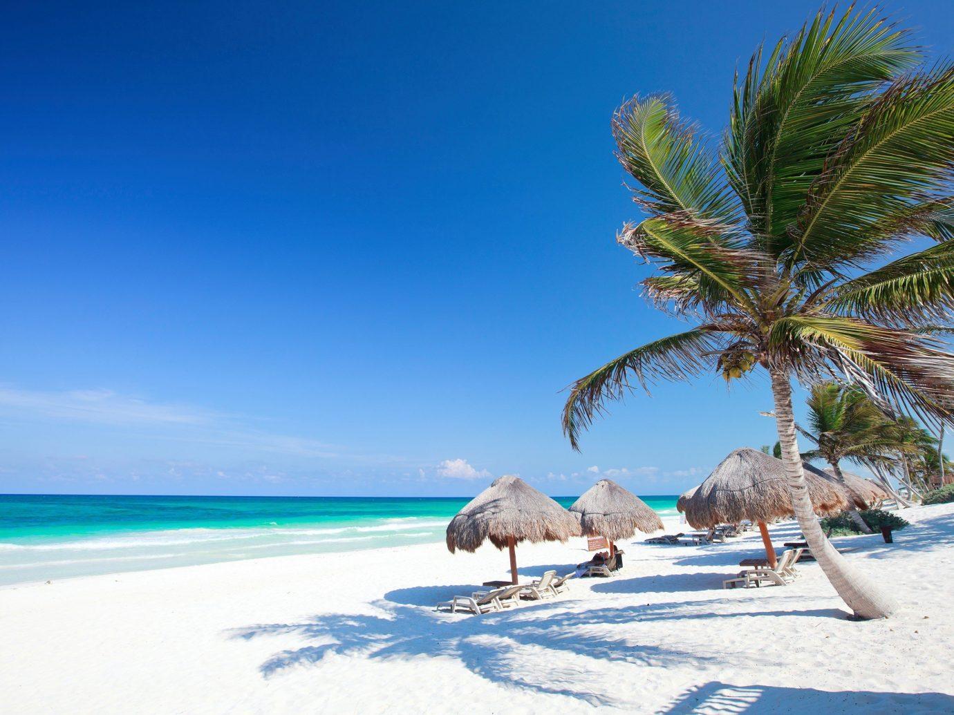 palm hut umbrellas on a sandy beach in Tulum