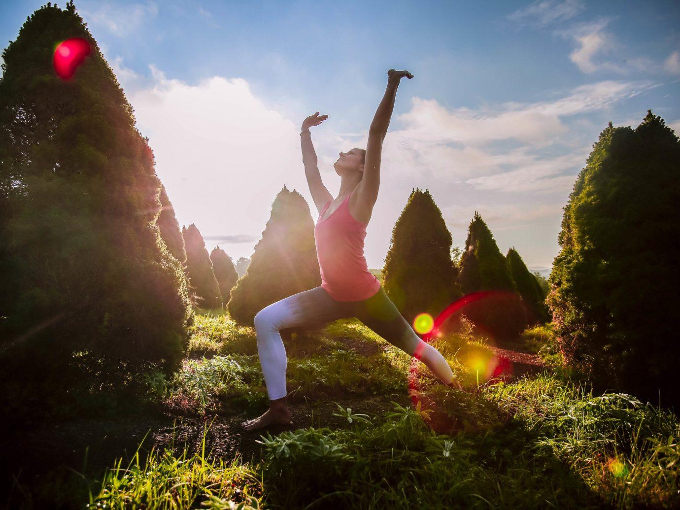 Health + Wellness Meditation Retreats Offbeat Spa Retreats Yoga Retreats outdoor tree sky color Nature light sunlight flower grass morning season leaf Sunset autumn Sun swimming