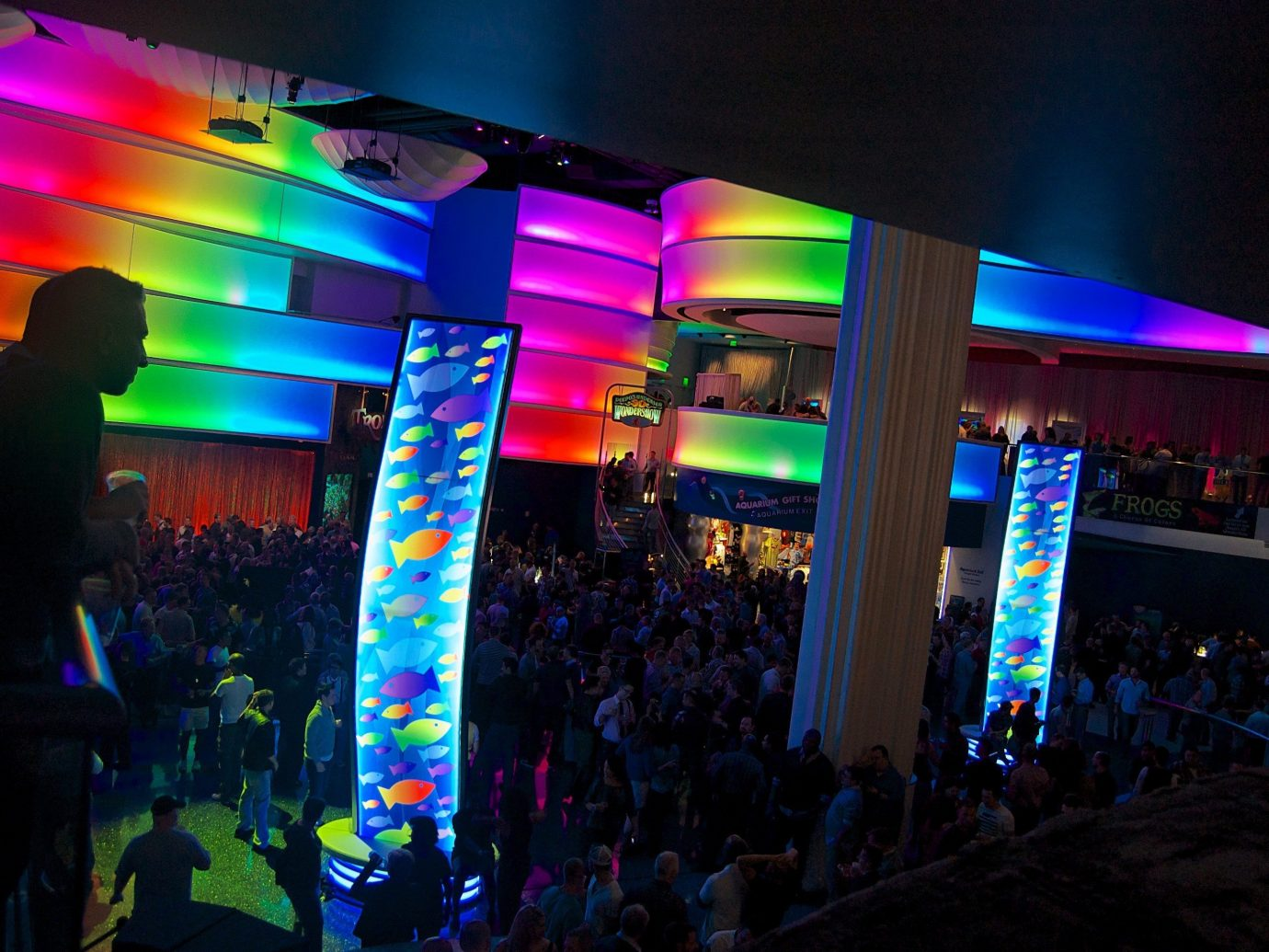 Trip Ideas color night nightclub disco stage Music colorful colored crowd
