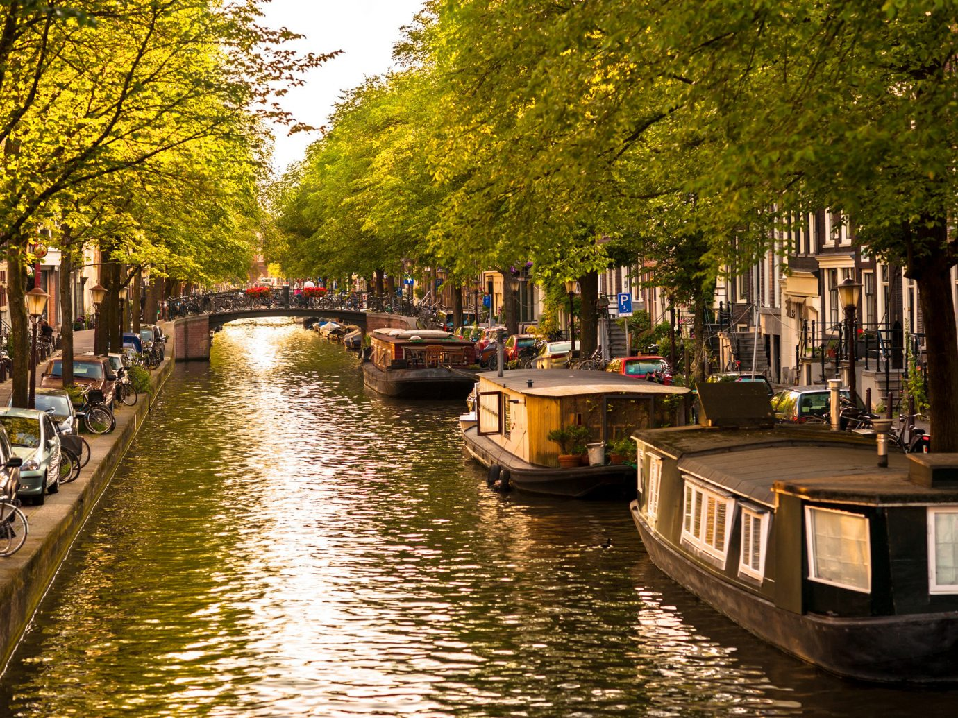 Travel Tips tree outdoor water Canal waterway reflection Boat body of water plant River Town City evening channel street bank night autumn watercourse lined several surrounded