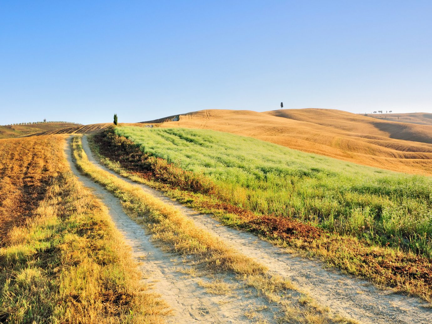 Trip Ideas grass sky outdoor Nature agriculture grassland field plain prairie ecosystem hill soil grass family horizon steppe rural area dirt road dirt path landscape plateau meadow mountain crop autumn valley waterway highland