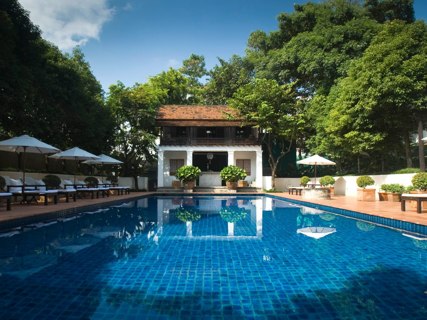 Elegant Hotels Jungle Patio Pool Romance tree outdoor swimming pool Resort property water sport estate reflecting pool resort town Villa backyard real estate mansion swimming blue