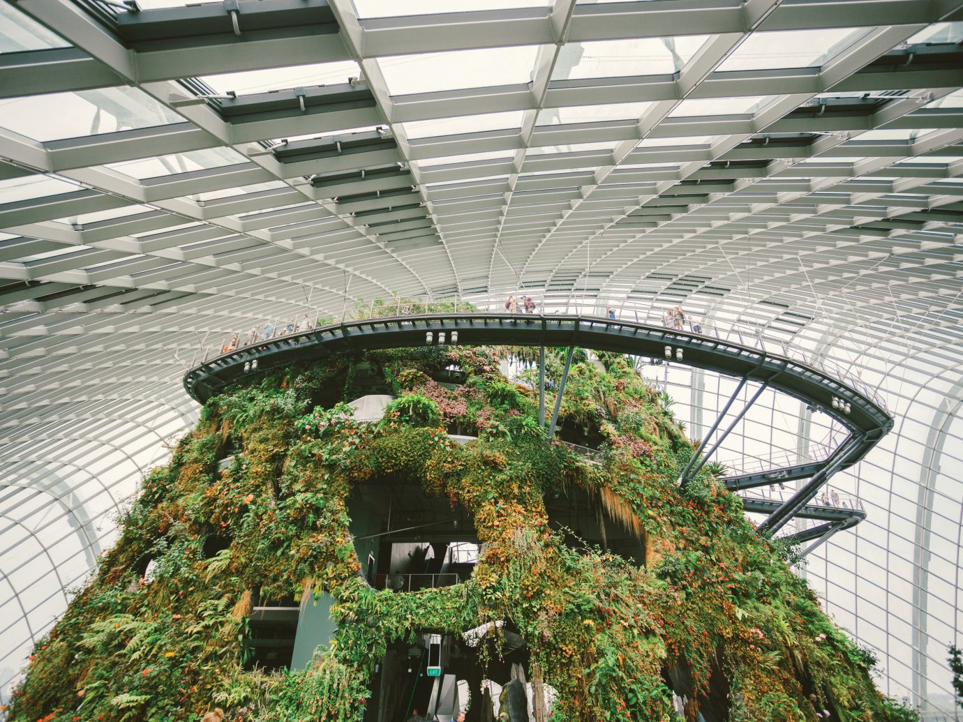 Offbeat Singapore Trip Ideas structure building outdoor sport venue Architecture stadium arena skyway greenhouse court