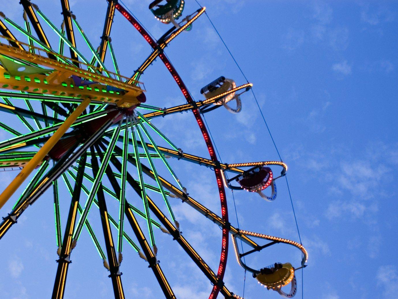 Offbeat sky outdoor blue ferris wheel tree ride plant outdoor object arecales flower mast amusement park roller coaster