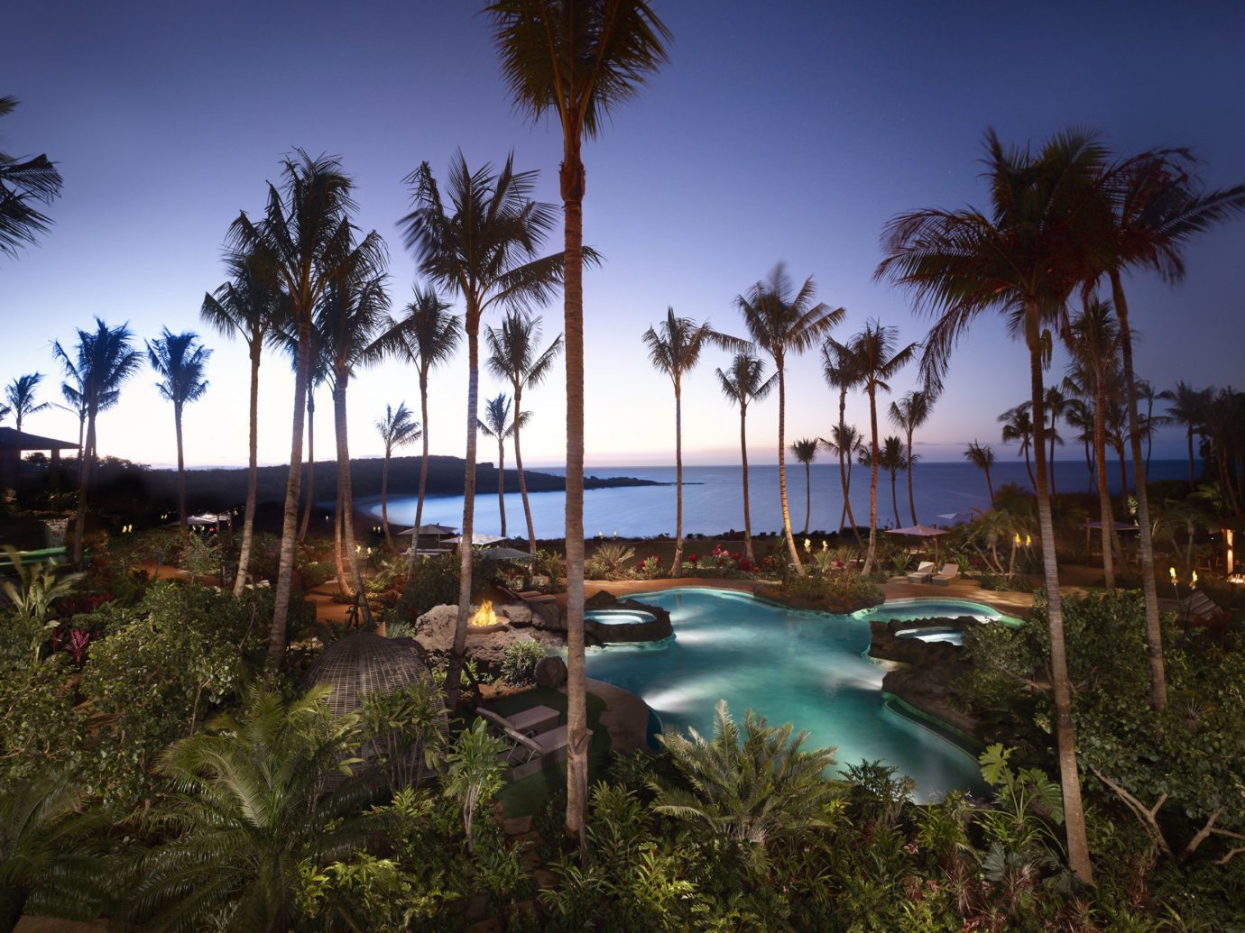 Offbeat tree outdoor palm sky Resort plant palm tree arecales tropics water swimming pool lighting evening leisure resort town reflection vacation real estate landscape lighting estate night computer wallpaper Sea tourism caribbean hotel Pool landscape lined shade Garden area sandy