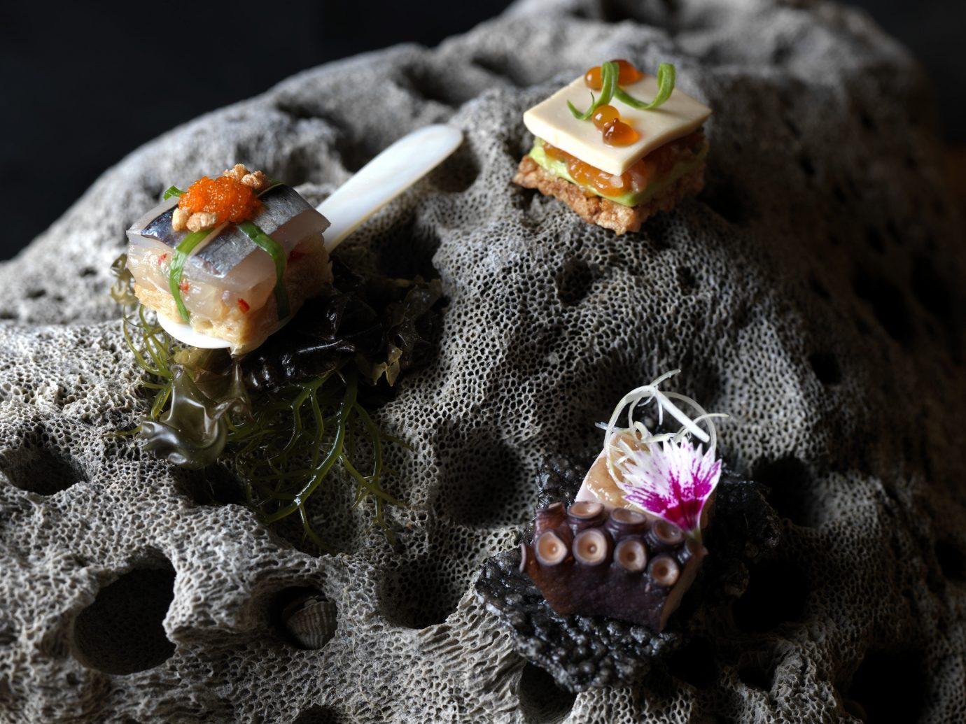 Trip Ideas food macro photography yellow jewellery flower fashion accessory close up leaf art dish bead