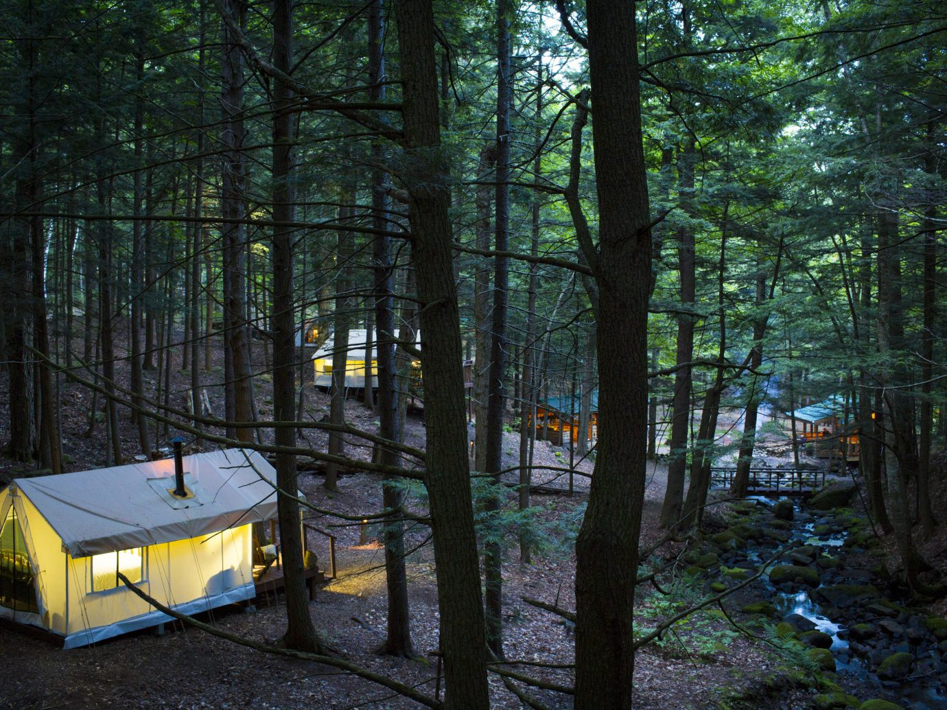 Glamping Outdoors + Adventure Weekend Getaways tree Nature outdoor Forest woodland plant wilderness leaf water sunlight biome state park old growth forest Winter landscape grove trail wood evening area wooded