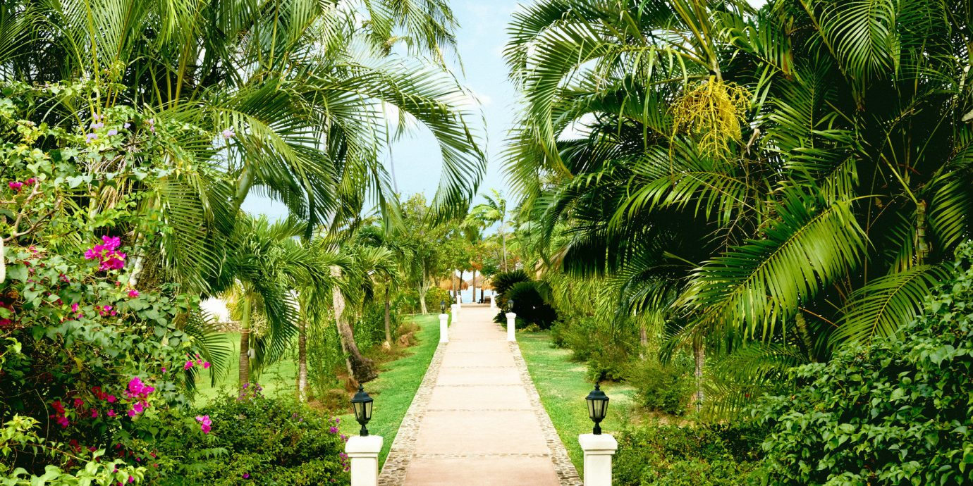 Walkway At Sugar Beach, A Viceroy Resort In Soufriere