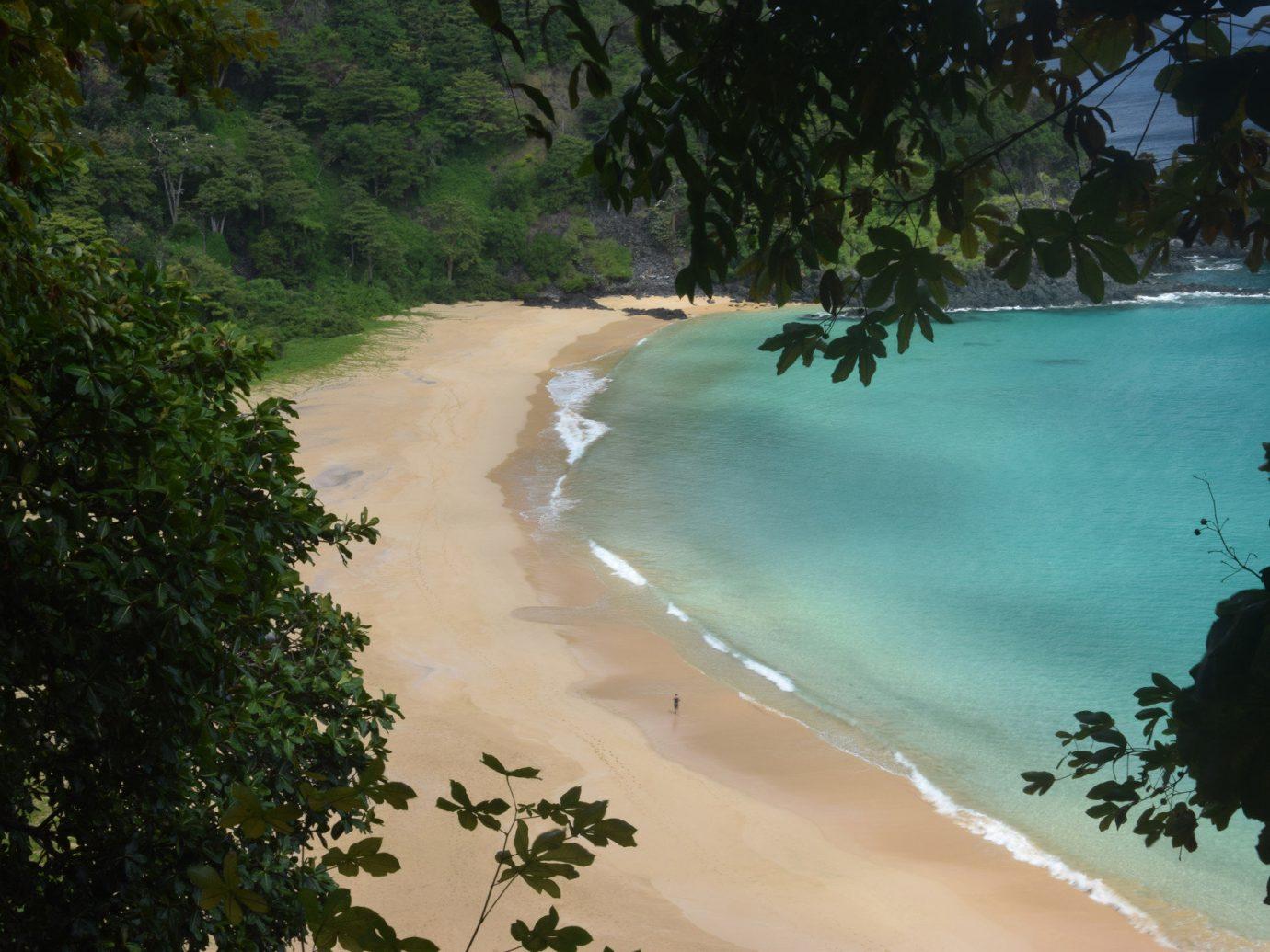 Trip Ideas tree outdoor landform body of water water Beach River Nature Coast tropics bay Jungle Sea plant shore