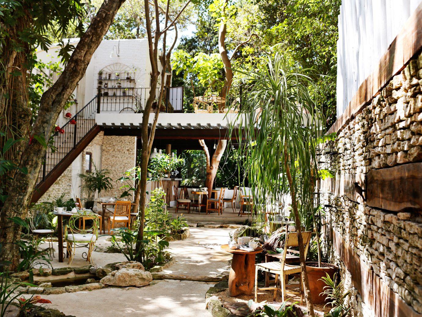 Exterior of Hotel La Semilla, Playa del Carmen, Mexico