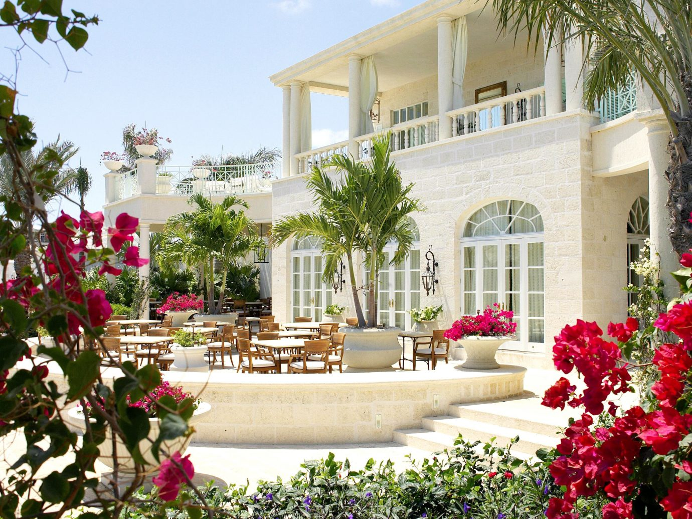 Hotels Trip Ideas flower plant tree building decorated floristry Courtyard home Garden estate residential area Resort yard backyard Christmas furniture
