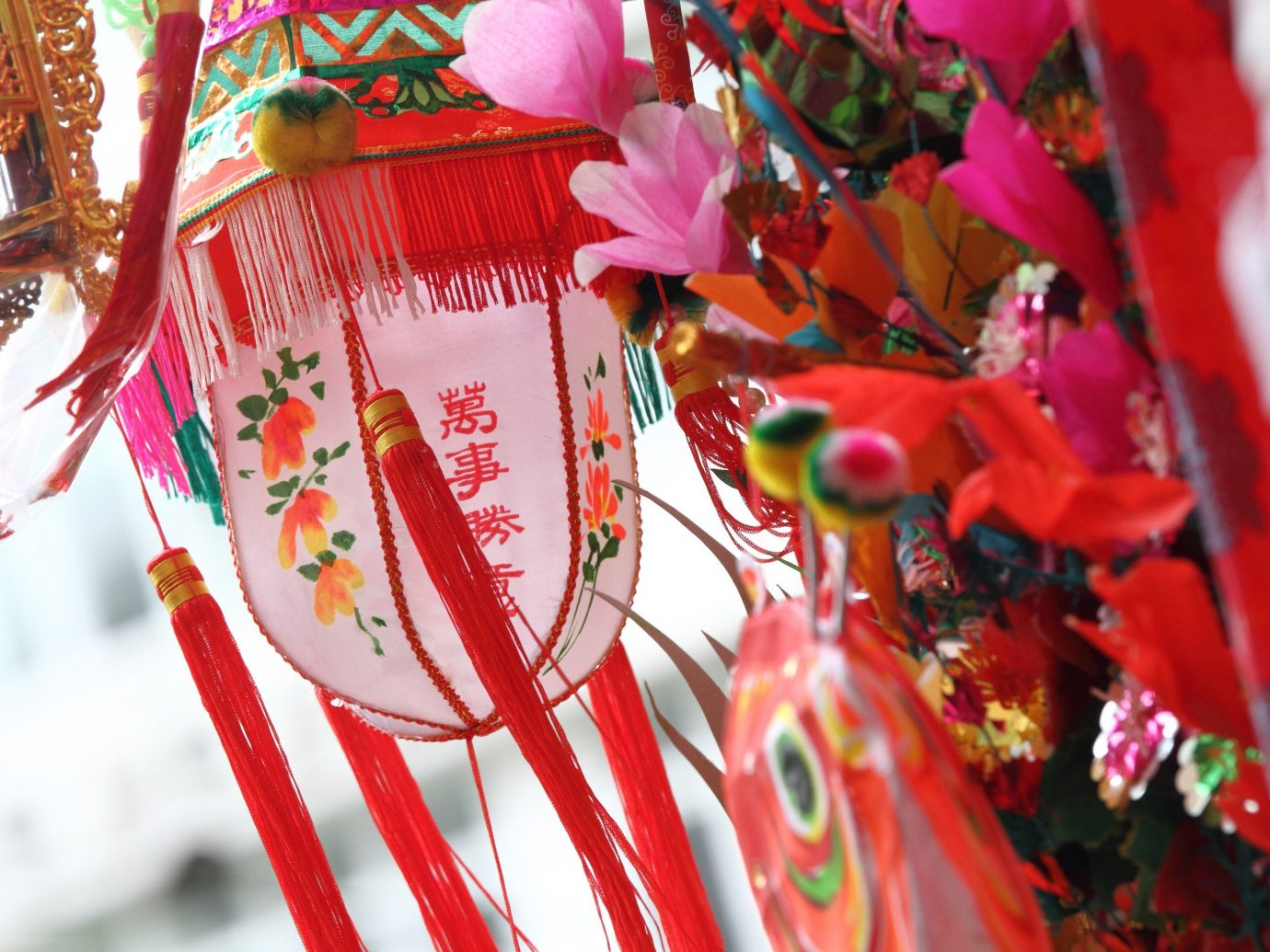 Trip Ideas color red flower spring event Christmas carnival festival chinese new year colorful plant decorated colored