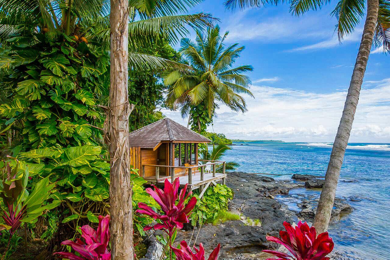 Trip Ideas tree outdoor habitat tropics plant botany caribbean vacation palm arecales Resort Jungle Beach flower Sea Garden shade