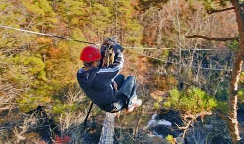 Outdoors + Adventure outdoor grass tree Adventure sports outdoor recreation extreme sport recreation trail abseiling Forest wooded