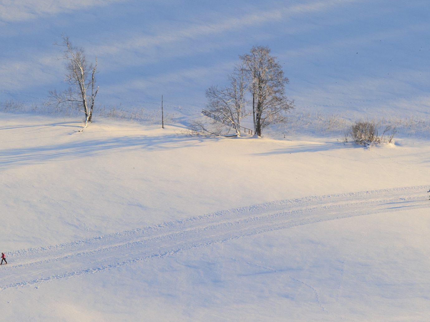 Offbeat snow outdoor sky skiing Winter covered Nature weather piste season geological phenomenon freezing mountain slope hill blizzard ski slope day fresh