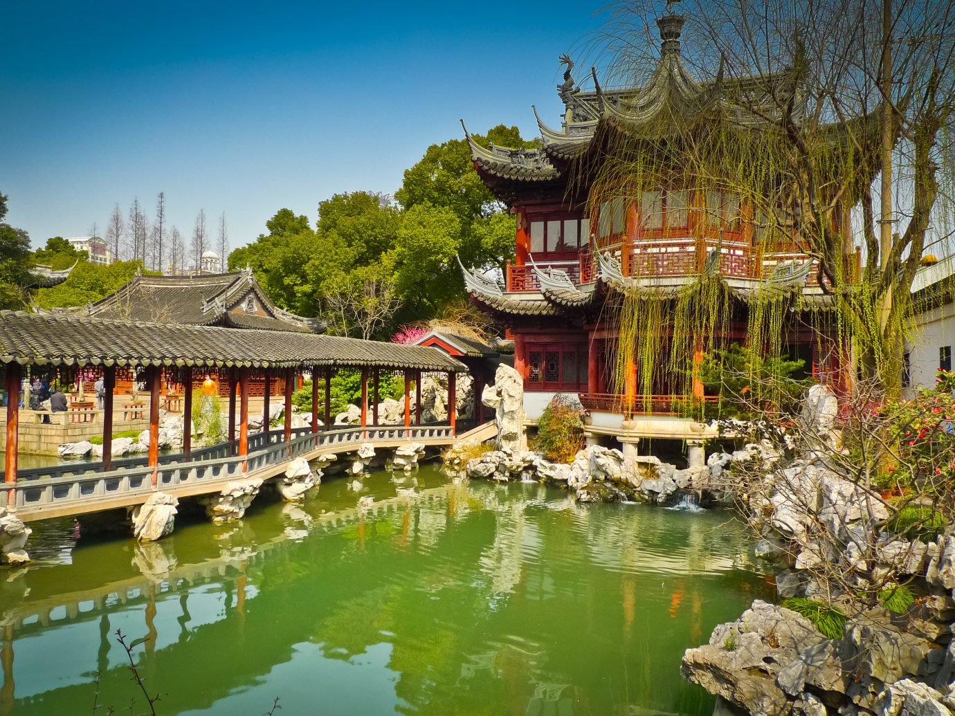 China china rose Shanghai Travel Tips Trip Ideas reflection water Nature plant waterway tree tourist attraction leisure sky tourism pond City real estate Resort landscape Garden flower chinese architecture watercourse