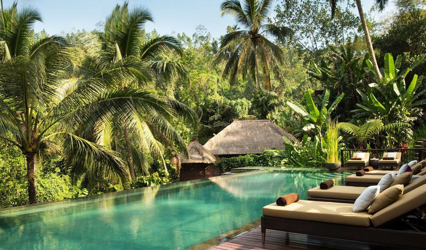 Health + Wellness Hotels tree outdoor palm swimming pool plant botany Resort vacation arecales estate tropics Jungle Pool Garden wooded