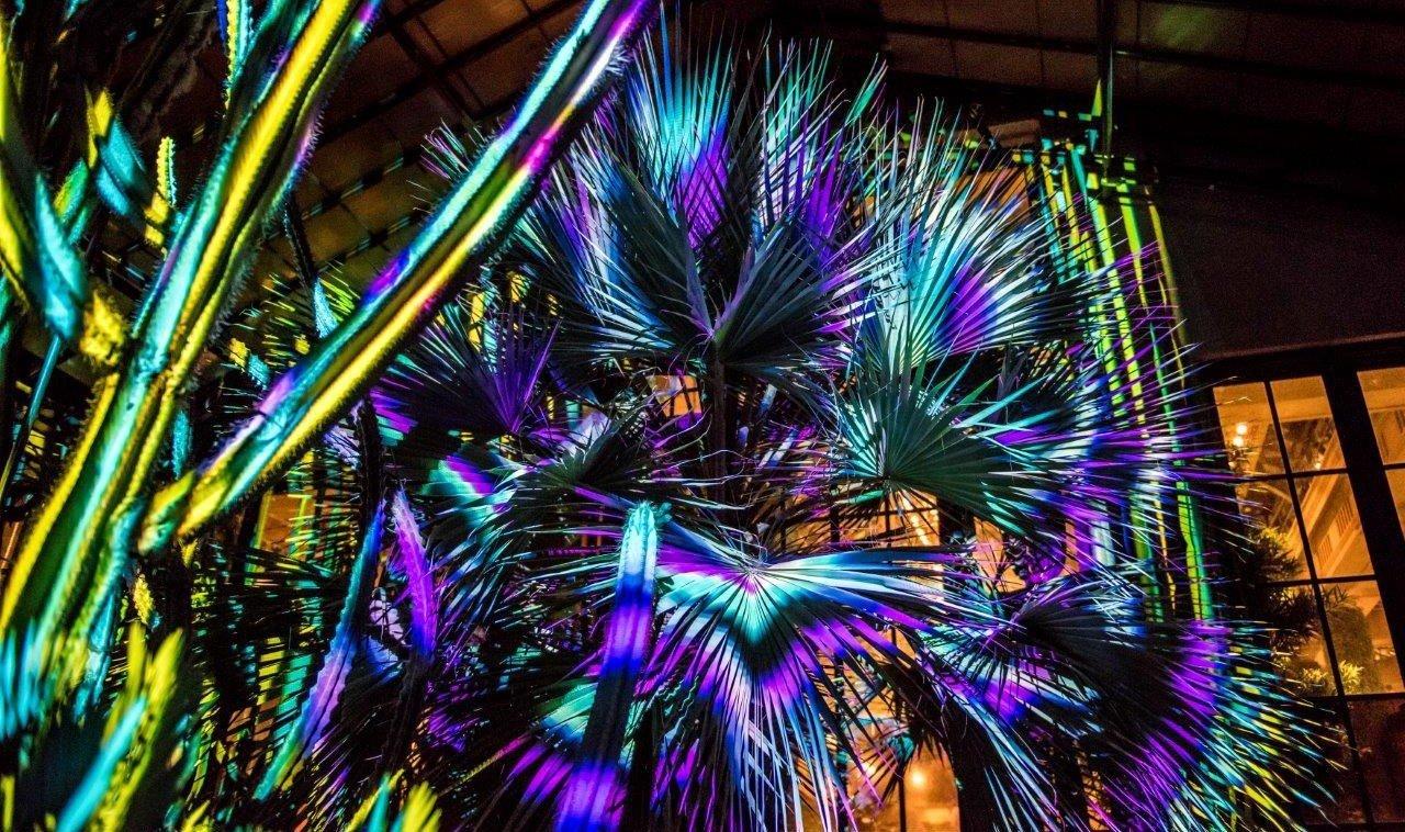 Trip Ideas color christmas decoration psychedelic art christmas lights flower fractal art colorful