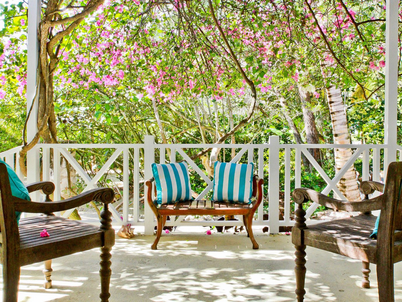 Hotels tree chair botany seat flower furniture