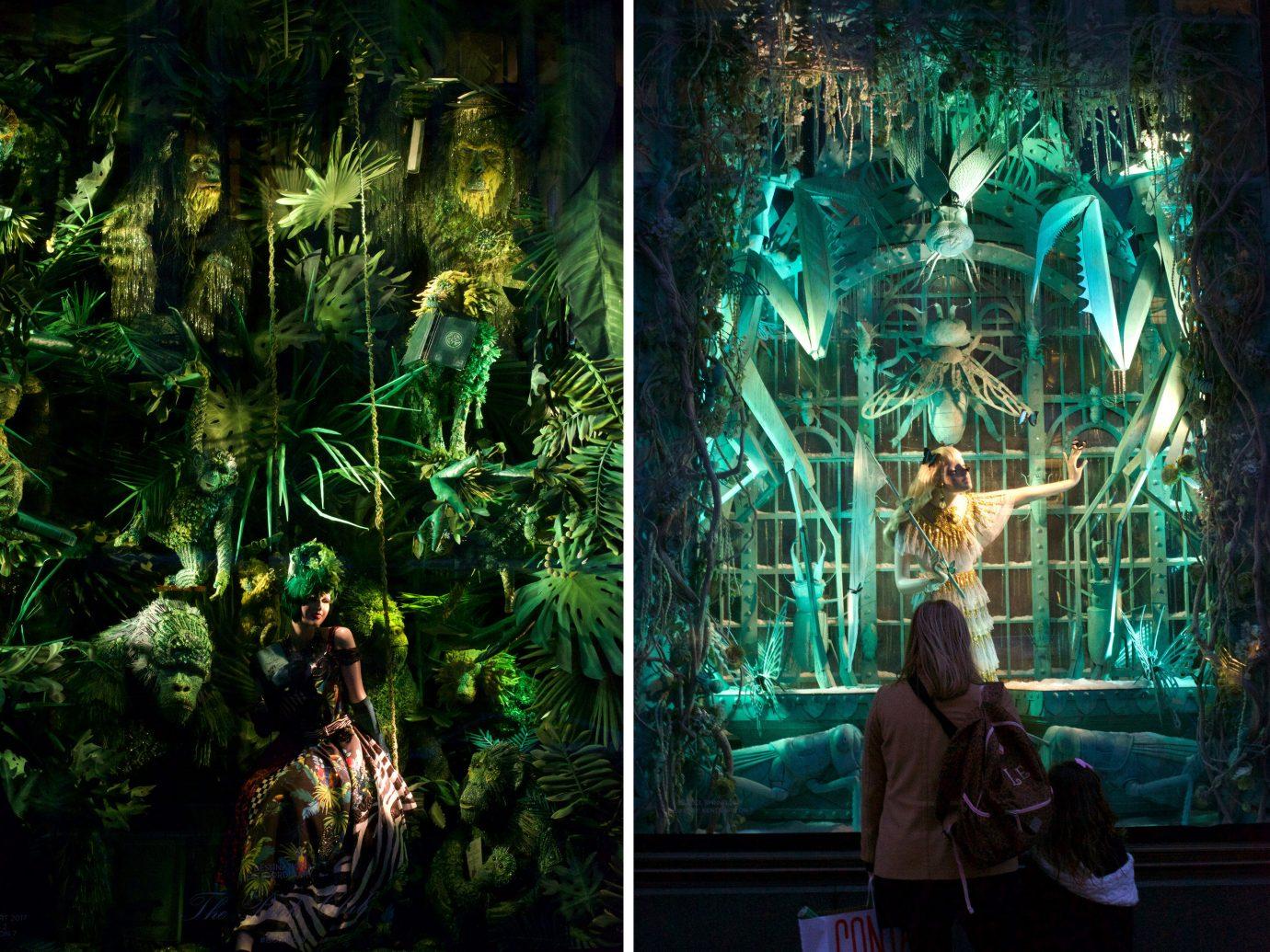 Trip Ideas tree screenshot Jungle
