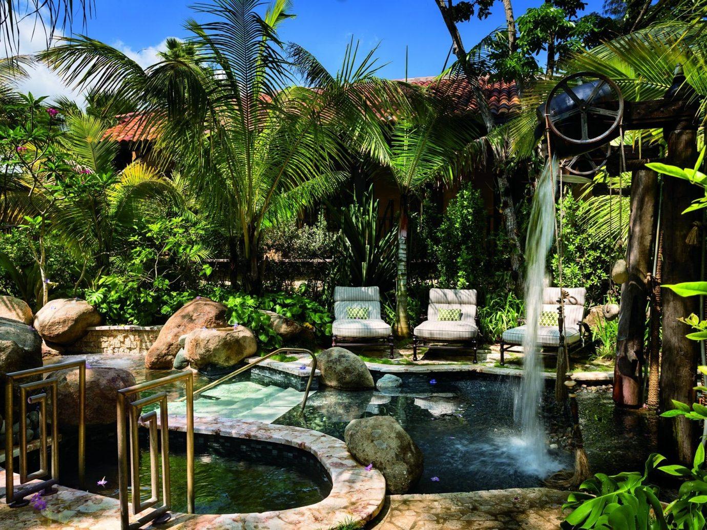 Hotels tree outdoor botany Jungle swimming pool Resort Garden arecales estate rainforest tropics plant backyard pond botanical garden flower palm