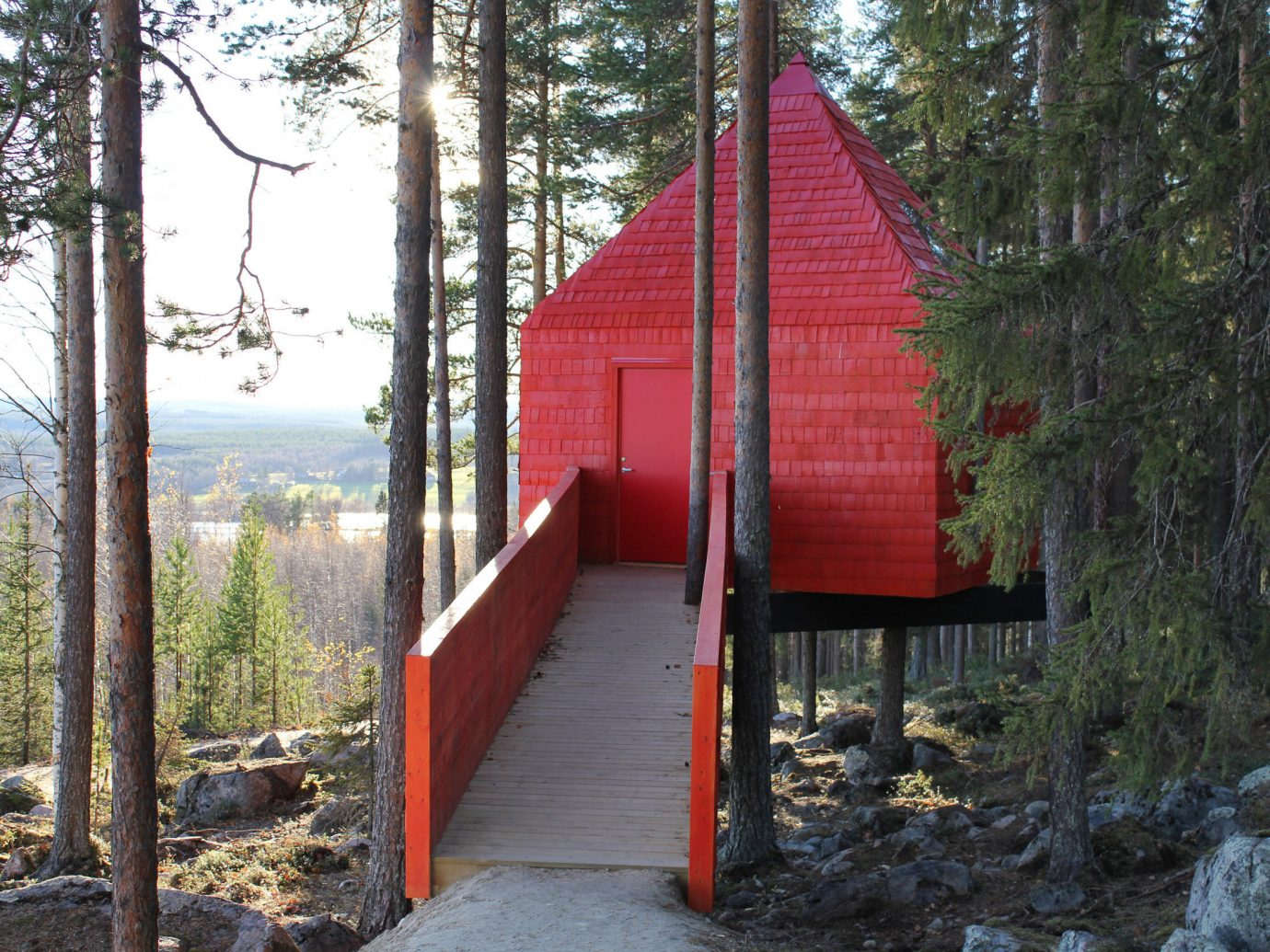 Hotels tree outdoor house shrine shinto shrine hut chapel cottage shack Forest wood wooded