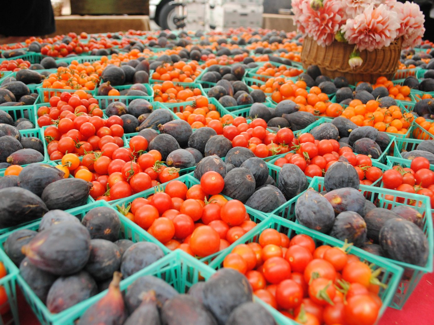 Food + Drink marketplace market food public space City plant human settlement produce fruit vendor land plant greengrocer flower vegetable different flowering plant colorful fresh sale arranged colored