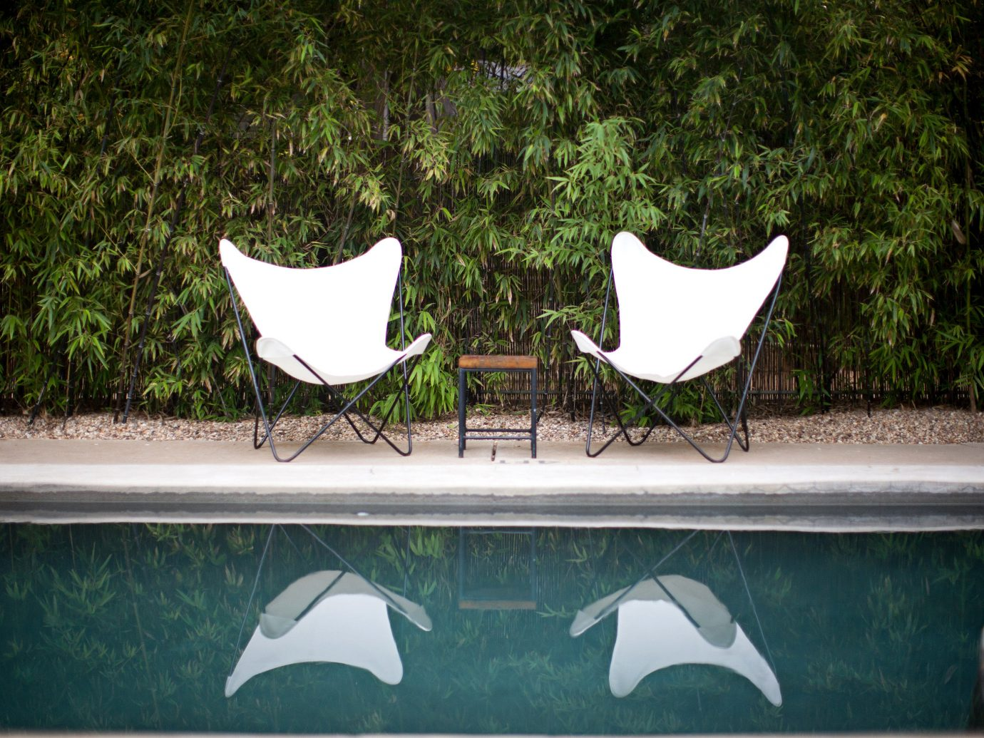 Design Grounds Hip Hotels Lounge Outdoors Pool tree outdoor green leaf art