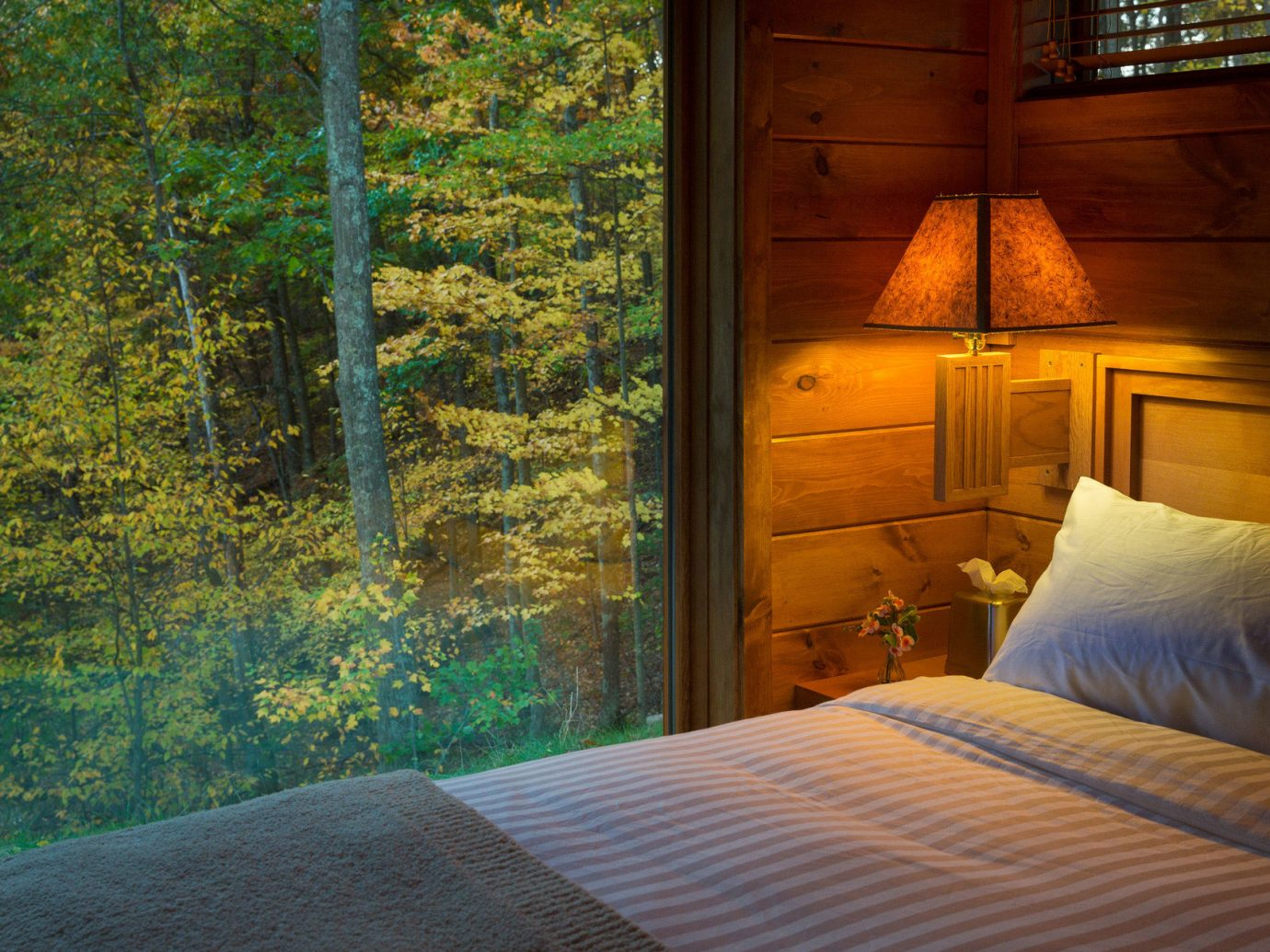 ambient lighting bed Bedroom Cabin calm charming cozy Forest isolation Lodge Luxury Nature Outdoors remote Rustic serene trees Trip Ideas view warm window woods indoor season estate sunlight cottage pillow autumn