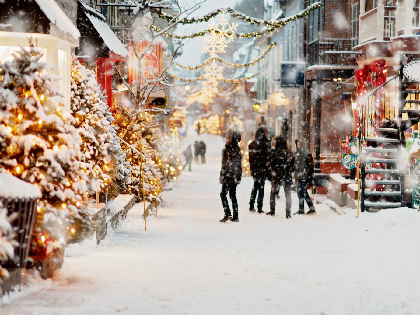Canada Montreal Toronto Trip Ideas snow Winter outdoor freezing tree Christmas tradition City event branch