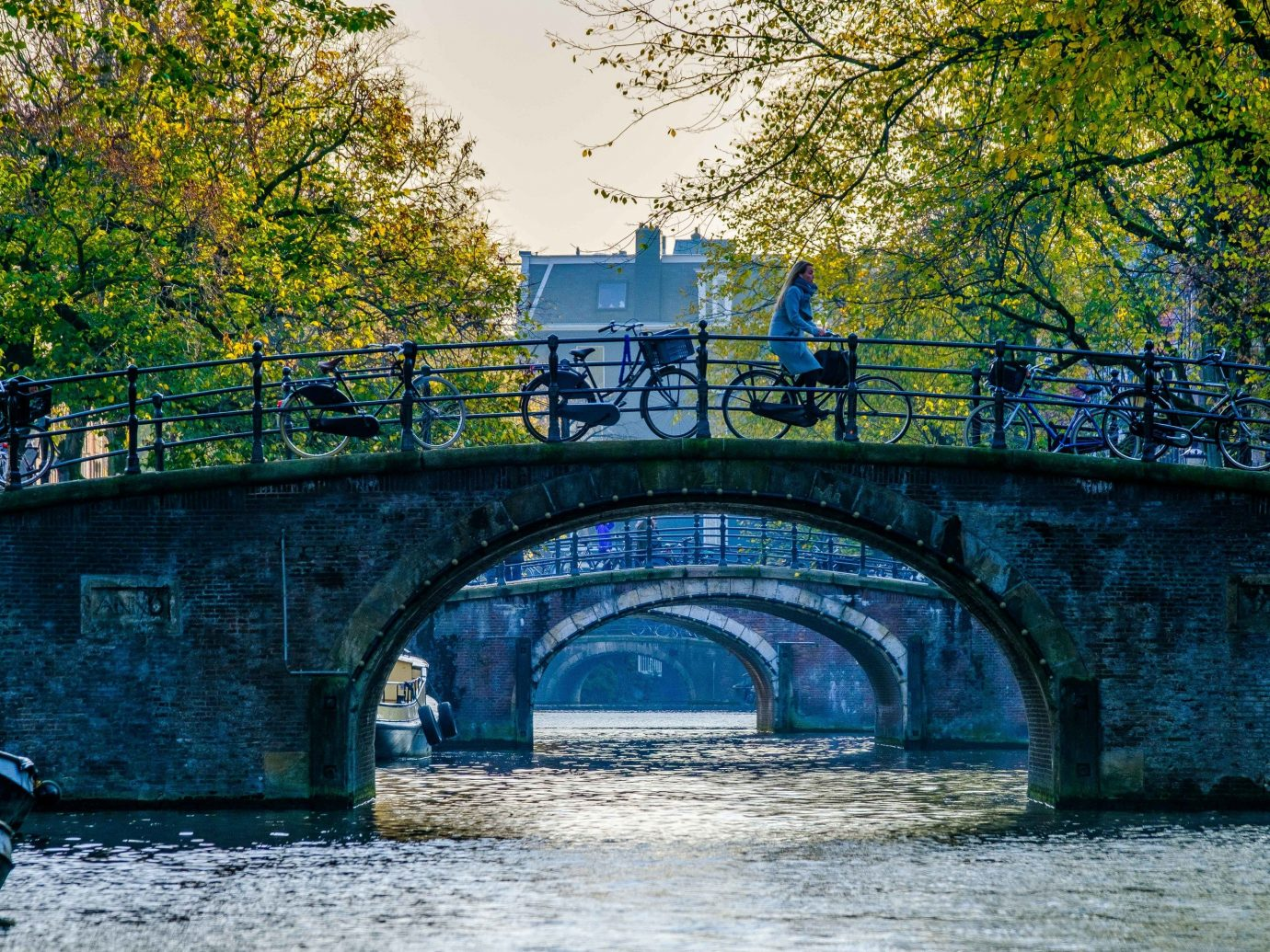 Cruise Travel Luxury Travel tree outdoor water bridge waterway Nature body of water Canal reflection River leaf plant watercourse bank sky arch bridge landscape City fixed link arch traveling stone