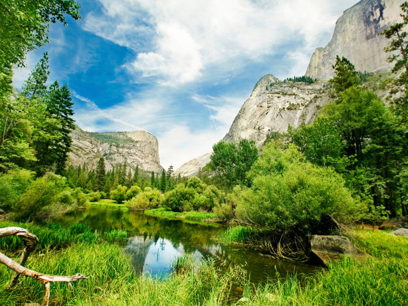 Health + Wellness Hotels National Parks Outdoors + Adventure Trip Ideas tree outdoor grass Nature wilderness ecosystem River valley mountain landscape flower green mountain range Lake meadow woodland reflection park Garden biome national park Jungle stream pond water feature surrounded grassy lush hillside plant bushes Forest highland
