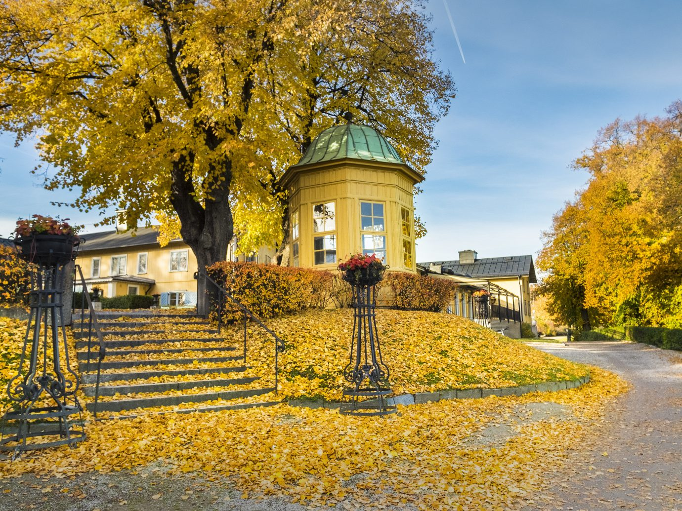 Hotels Stockholm Sweden tree outdoor sky leaf yellow Nature autumn landmark woody plant estate house plant home château stately home real estate sunlight tourist attraction landscape facade grass cottage manor house branch maidenhair tree Village