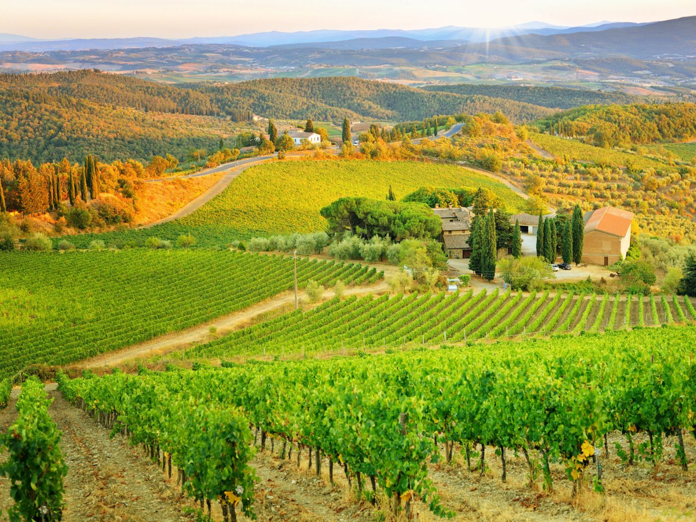 Italy Trip Ideas grass outdoor mountain sky agriculture Vineyard Nature field leaf rural area hill landscape mount scenery plain plantation Farm grassland grassy lush pasture hillside highland