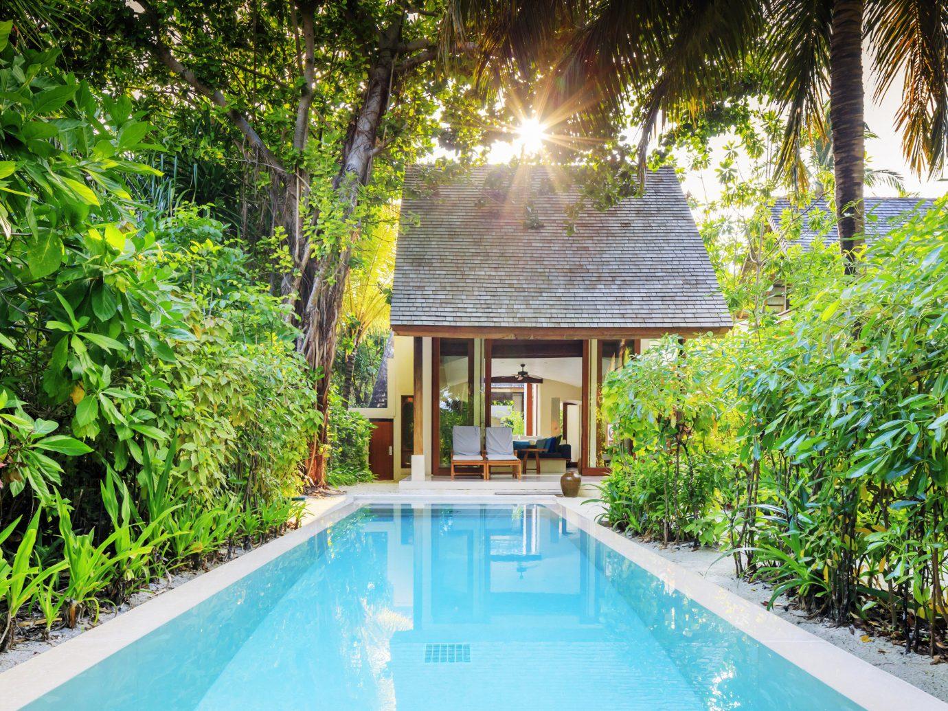 Hotels tree outdoor swimming pool property estate Resort backyard Villa Garden real estate mansion cottage Pool Jungle