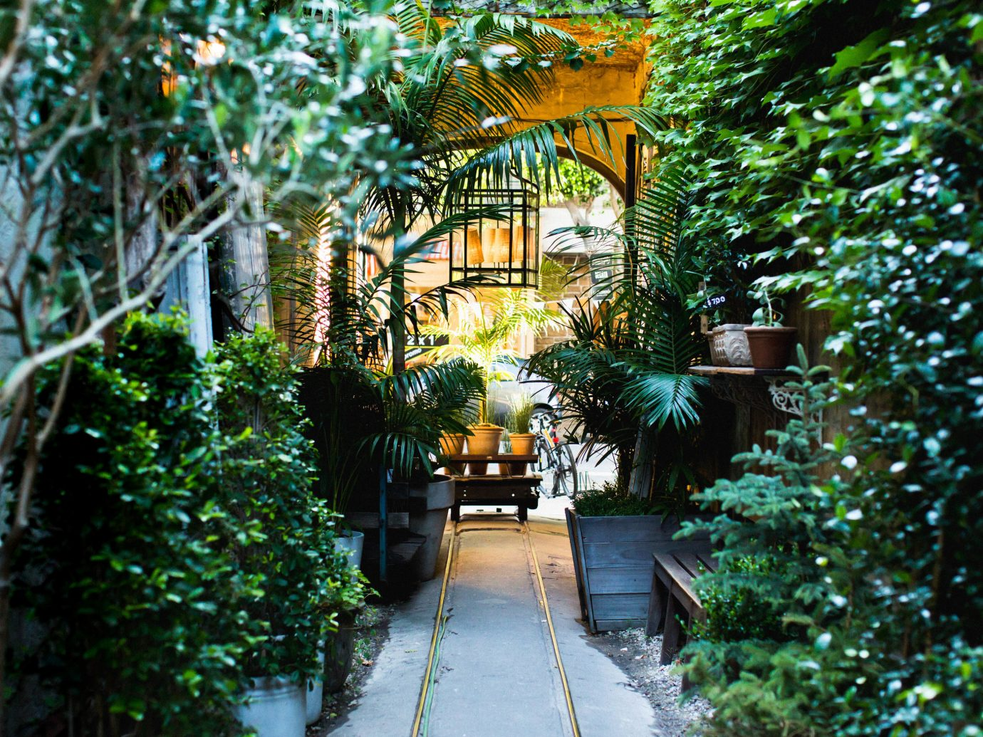 Trip Ideas tree outdoor house green neighbourhood botany Garden estate Courtyard home backyard flower yard plant Jungle Resort cottage way Forest bushes wooded surrounded