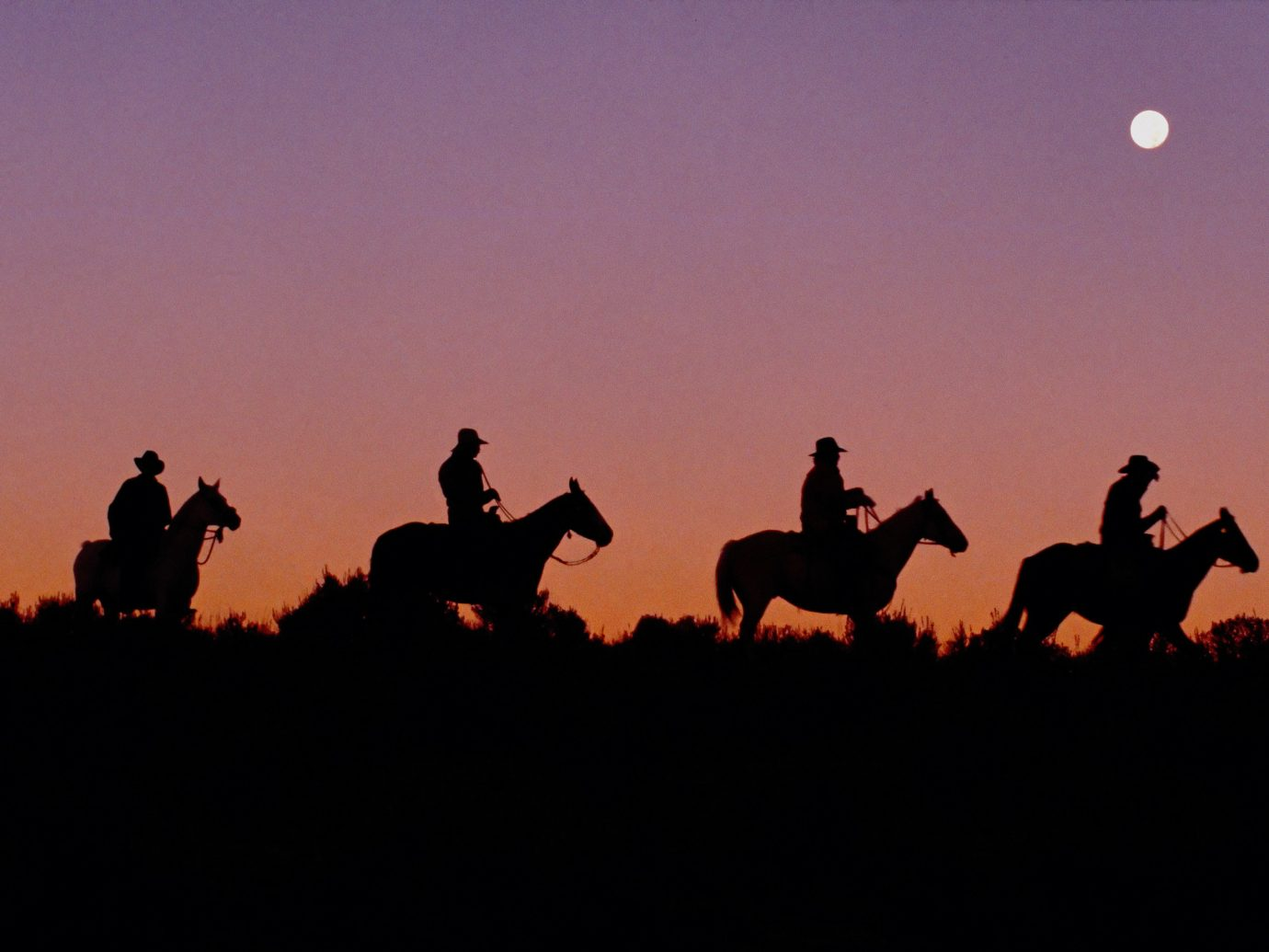 Adventure sky outdoor horse like mammal dark silhouette horse sunrise Sunset evening ecoregion light mustang horse dusk dawn fun landscape plain field image aircraft
