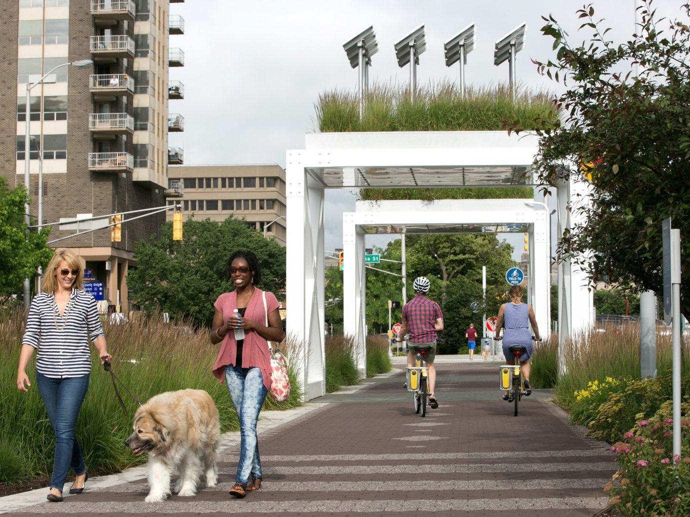 Health + Wellness Trip Ideas outdoor tree road neighbourhood pedestrian walkway