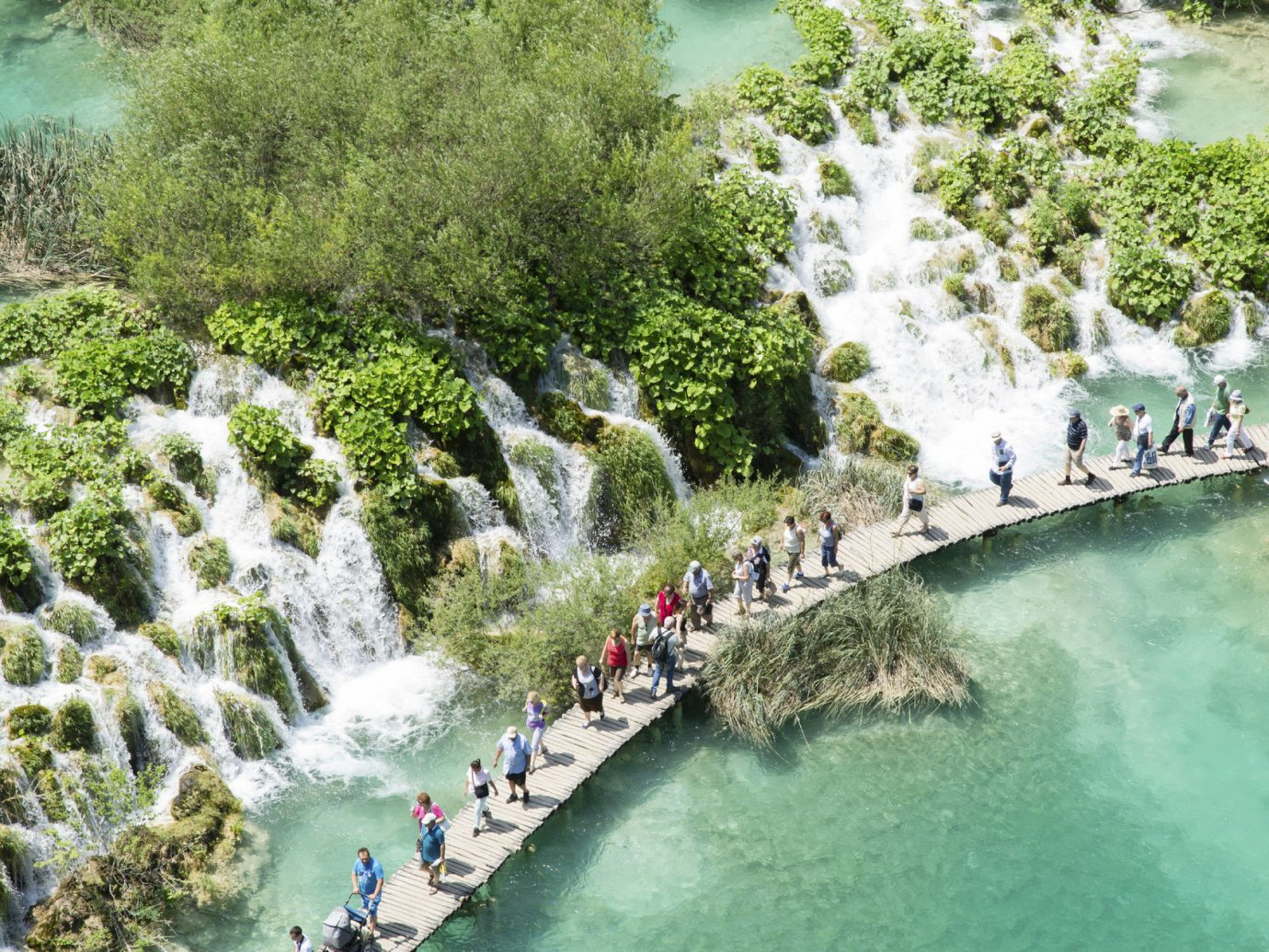 National Parks Offbeat Travel Tips Trip Ideas tree water outdoor River body of water watercourse Nature tourism rapid waterway water feature wave surrounded