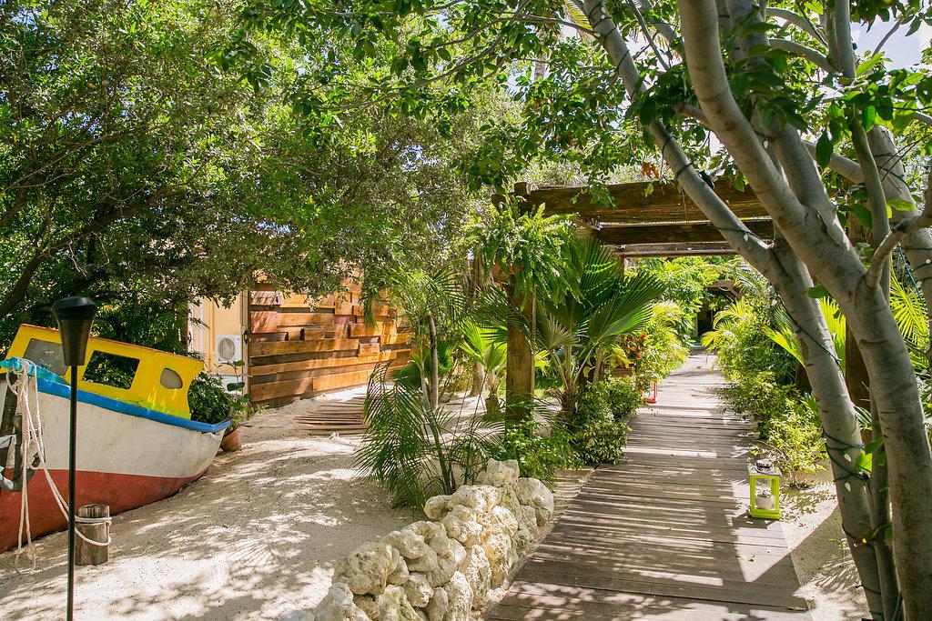 Hotels tree outdoor botany Resort walkway Garden estate flower arecales Jungle Village plant