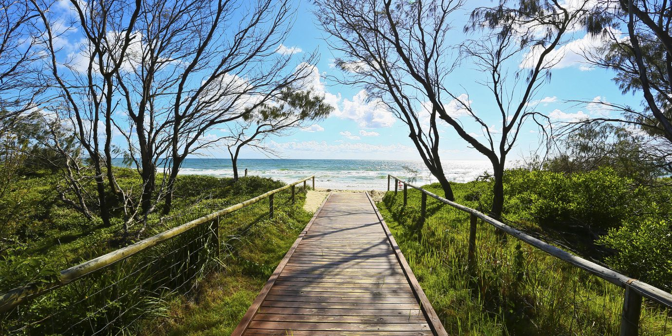 Secret Getaways Travel Tips Nature path sky boardwalk walkway tree plant nature reserve trail water spring Coast wetland landscape