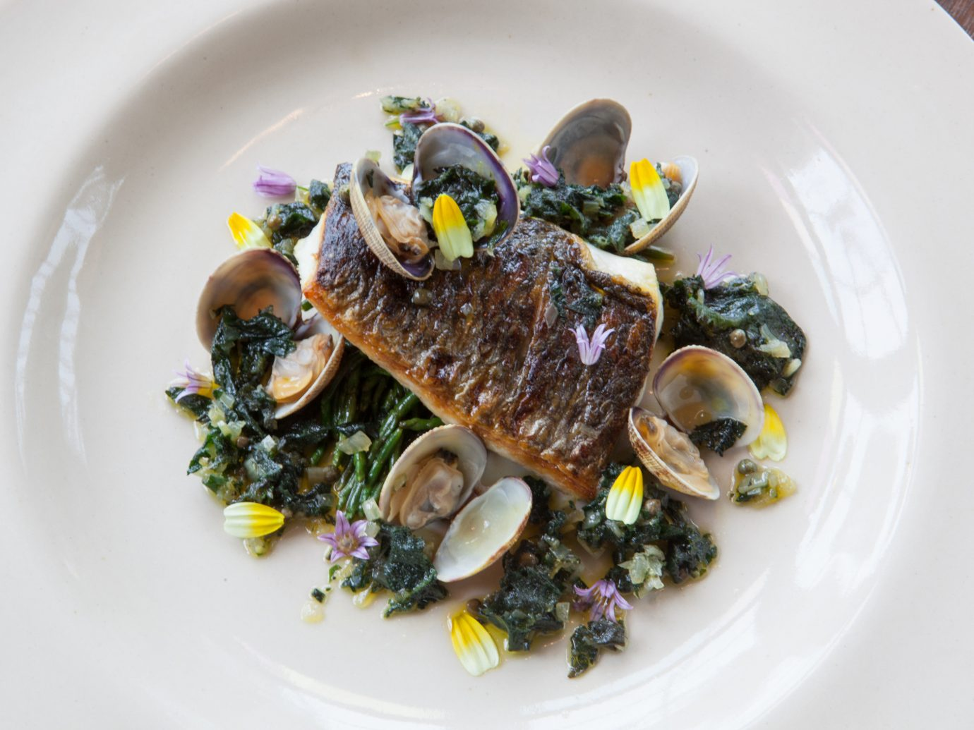plate Trip Ideas food table white dish mussel produce fish vegetable cuisine Seafood meal meat dinner containing piece de resistance