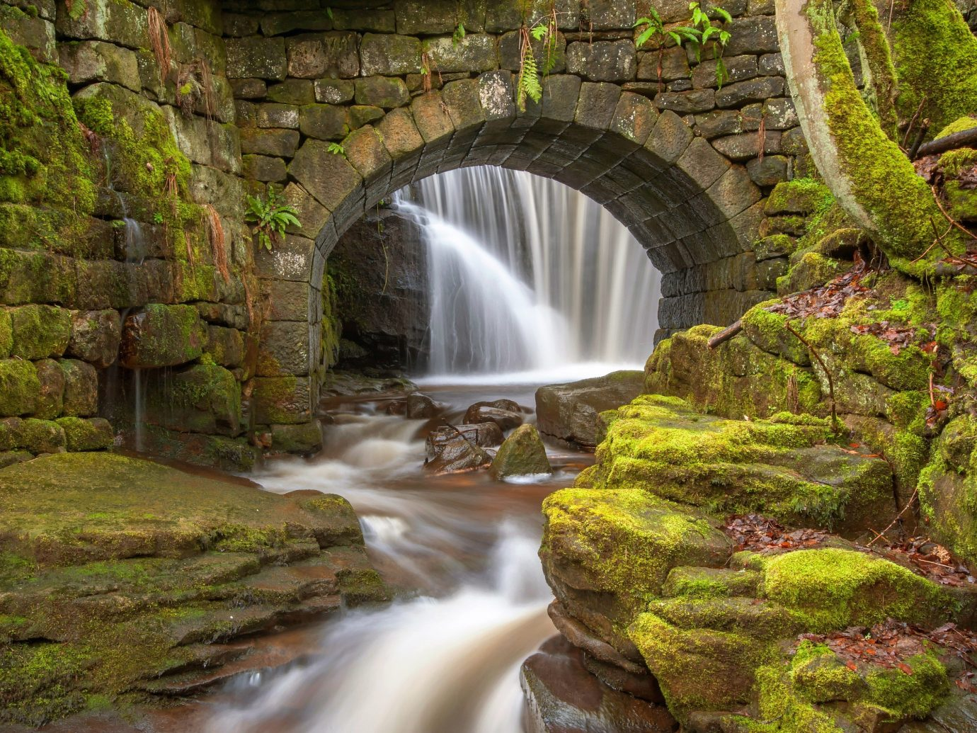 Trip Ideas Nature Waterfall rock water watercourse stone stream water feature River Forest autumn landscape woodland devil's bridge Jungle rainforest