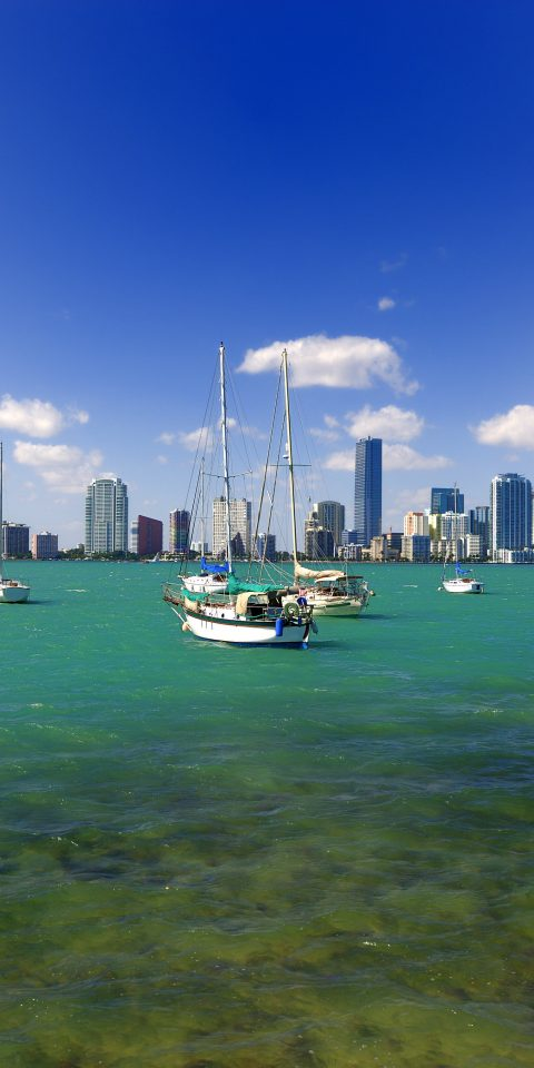 Trip Ideas sky water Boat outdoor Sea waterway daytime skyline horizon calm Ocean marina tree City River sailboat green Harbor watercraft coastal and oceanic landforms grass cloud bay channel landscape Coast ship plant docked day several
