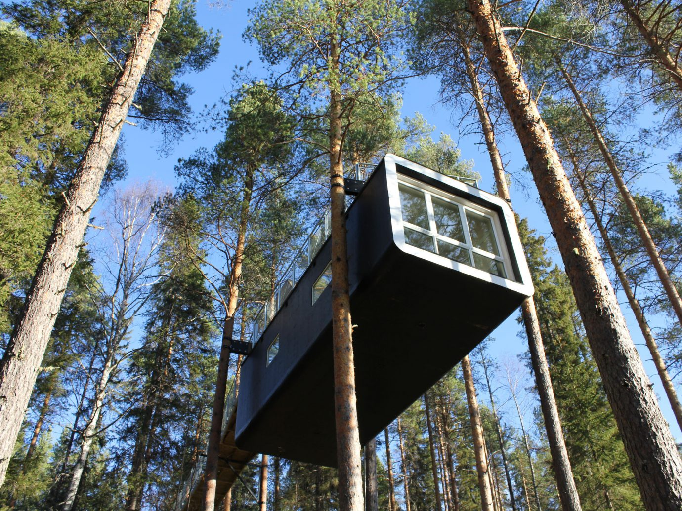 Hotels tree outdoor building house rolling stock woody plant Forest wooded