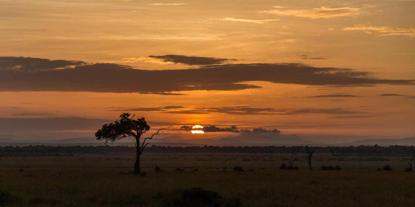 Hotels Safari outdoor sky grass Sunset horizon sunrise atmospheric phenomenon dawn plain field cloud afterglow savanna dusk grassland morning evening Nature prairie Sun Sea Coast landscape clouds shore distance