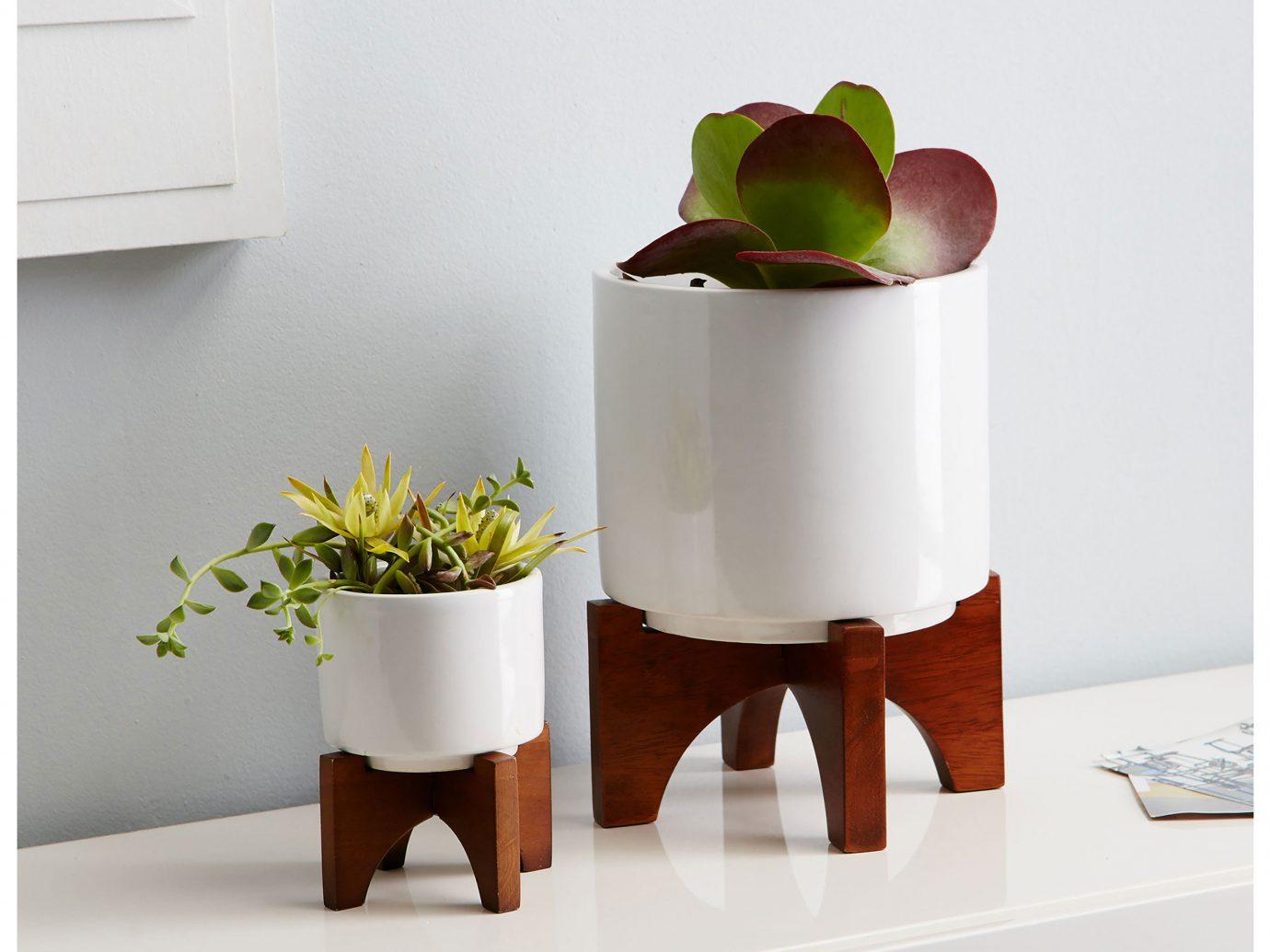 Style + Design indoor furniture product shelf ceramic table lighting vase flowerpot produce food